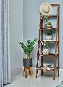 Cherry Ladder Bookcase